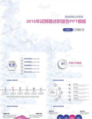 2018年试聘期述职报告PPT模板