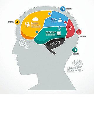人脑图形图表