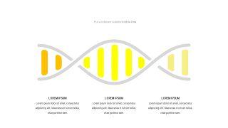 黄色关联关系PPT图表-24