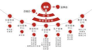 深红组织结构PPT图表-21