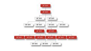 深红组织结构PPT图表-12
