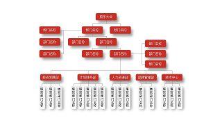 深红组织结构PPT图表-16