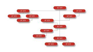 深红组织结构PPT图表-11