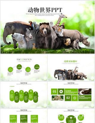 动物世界保护野生动物ppt动态模板