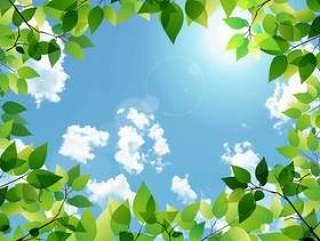 新鲜的绿色和蓝色的天空