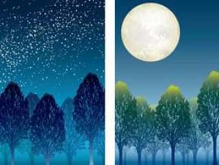 """""""天空之森""""和""""月光森林""""2件"""