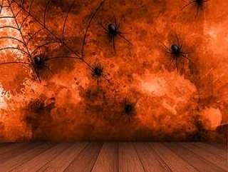 万圣节背景与垃圾背景上的蜘蛛