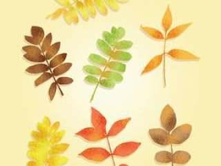 纹理的秋天树叶矢量