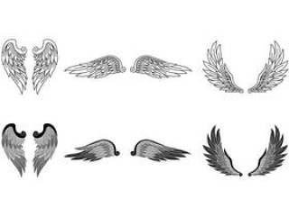 现实的天使的翅膀