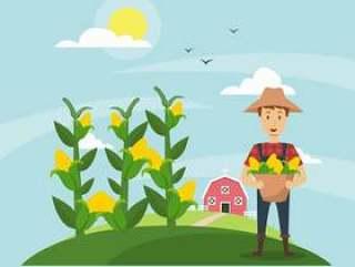 玉米秸秆田间和农民的插图