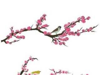 樱花·梅花·桃花集