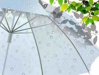 雨风景图03新鲜的绿色和乙烯基伞