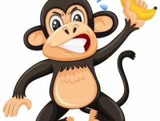 在白色背景的一只恼怒的猴子