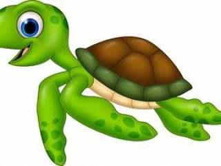 在白色背景隔绝的动画片乌龟