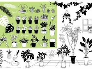 植物植物材料