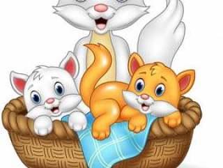 在白色背景和小猫隔绝的猫