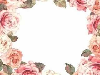 古色古香的玫瑰花朵框架