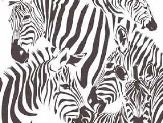 斑马动物矢量