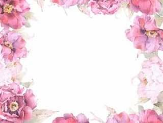 绯红牡丹花框架 - 框架