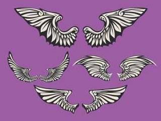套白色的翅膀与紫罗兰色的背景