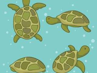 手拉的海龟传染媒介
