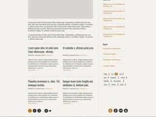 精致国外网站模板01—psd分层素材