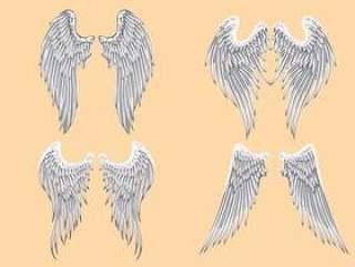 矢量纹章天使的翅膀