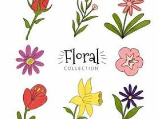 七彩花朵集合
