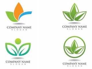 叶绿色自然商标和标志模板传染媒介