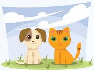 小狗和小猫