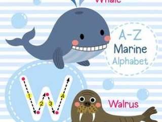 字母W海字母表