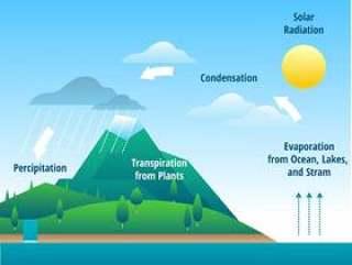 水循环信息图表矢量