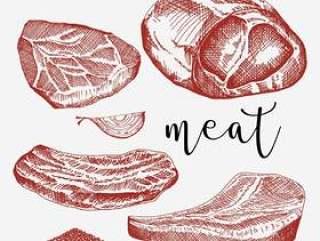 小牛肉集合手拉的传染媒介