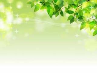 新鲜的绿色的闪光(角落)