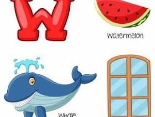 W字母表的例证
