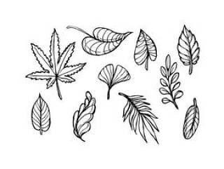 叶草绘图标矢量