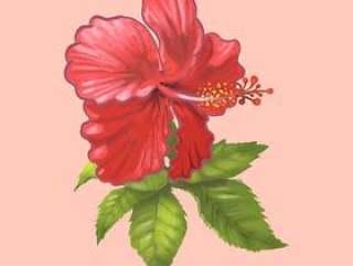 一朵美丽的红色花的例证