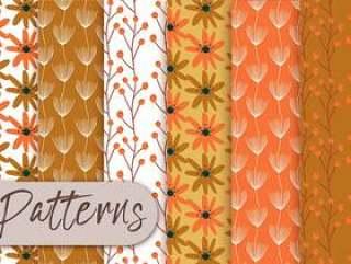 橙色花卉图案集