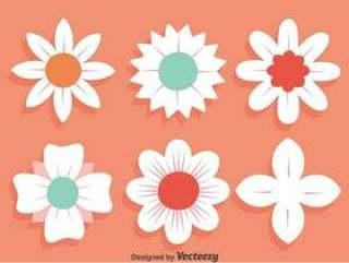 在桃红色传染媒介的白花集合