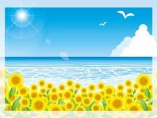 向日葵和夏季海上的阳光