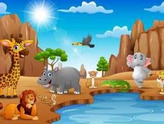 生活在沙漠的动画片野生动物
