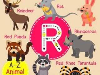 字母R动物园字母表