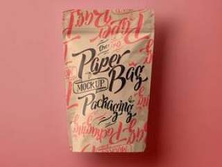 Psd纸袋包装Vol3