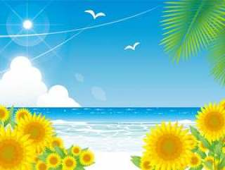 仲夏海滩和向日葵景观