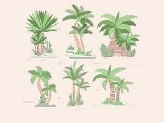 矢量棕榈树