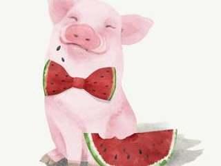 小猪的例证