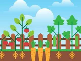城市园艺种植生长蔬菜平面设计插图