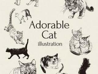 可爱的猫咪图