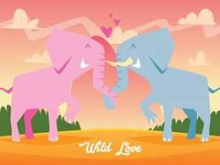可爱的大象坠入爱河