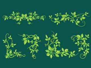 美丽的毒葛与绿色的树叶